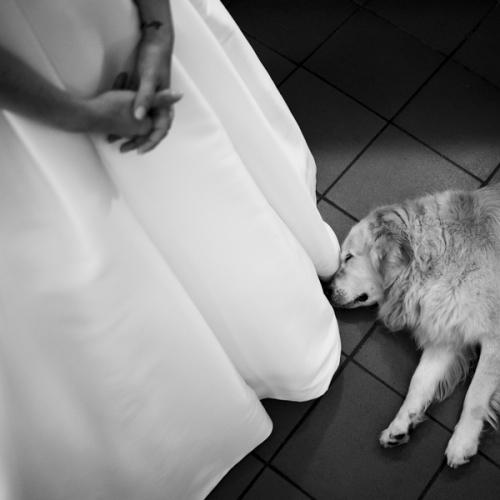 Federico-Rongaroli-fotografo-matrimonio-Brescia-wedding-reportage-matrimonio-non-in-posa-album-di-matrimonio-franciacorta-lago-di-garda-lago-d'iseo-luxury-09