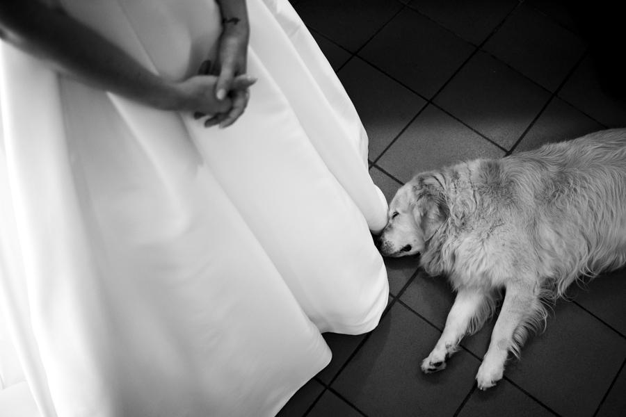 Fotografo matrimonio Brescia Arianna e Andrea wedding reportage Le Quattro Terre-02